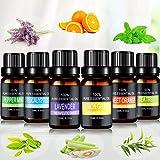 Aceites Esenciales, joylink 100% Natural Puro, 6 x...