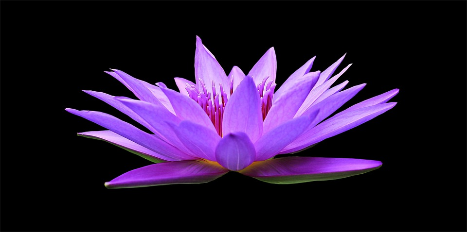 aprender a meditar, meditacion, meditar, buda, reiki, yoga