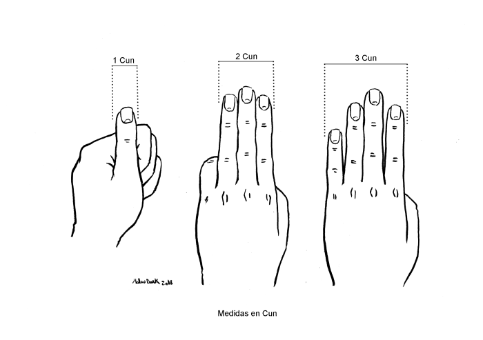medidas puntos acupuntura